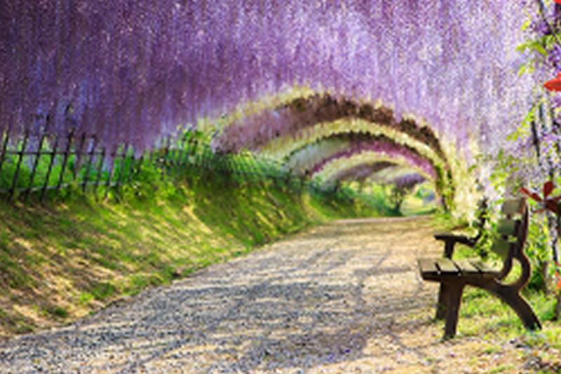 Mẫu tranh dán tường 3D phong cảnh đẹp nhất (Mã: TH-1192)