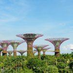 In tranh dán tường 3D Thanh Xuân, Hà Nội ở đâu tốt nhất?