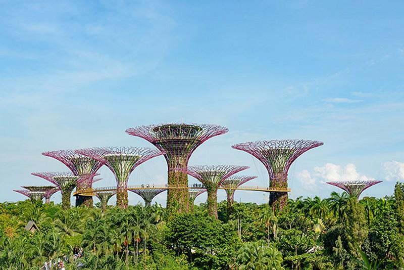 Mẫu tranh dán tường 3D ở Hà Nội bán chạy nhất - Tranh dán tường phong cảnh