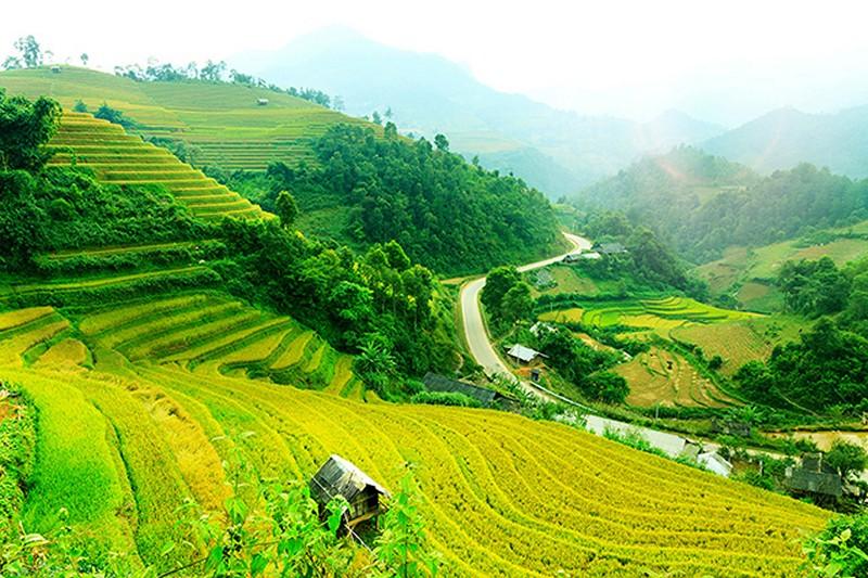 Mẫu tranh phong cảnh làng quê đơn giản đẹp nhất - Tranh làng quê Việt Nam