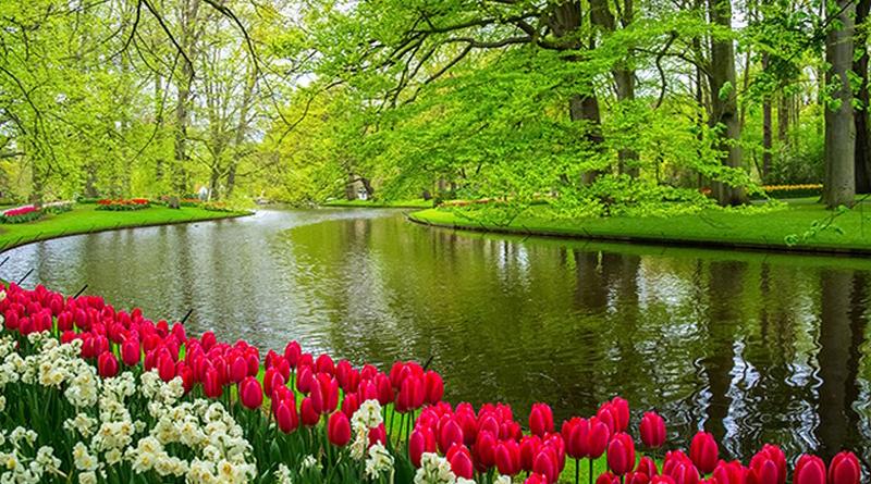 17 mẫu tranh phong cảnh khổ dọc đẹp nhất cho phòng khách lung linh