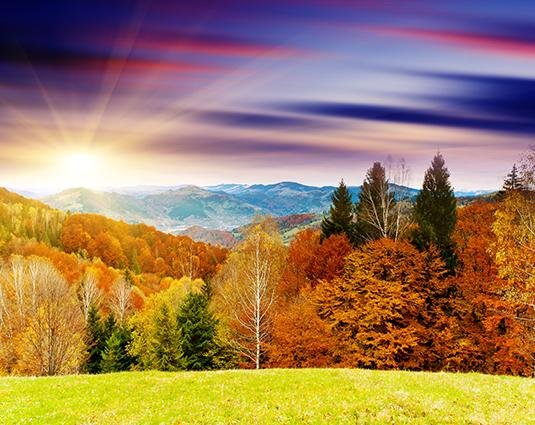 Mẫu in tranh lụa 3d phong cảnh: THS_0329