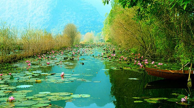 30 mẫu tranh dán tường 3d đẹp nhất về phong cảnh thiên nhiên