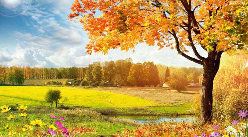 Tranh dán tường phong cảnh đẹp