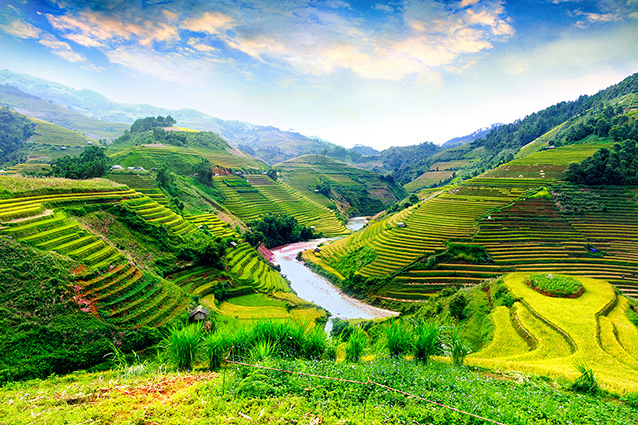 Tranh phong cảnh quê hương đẹp nhất: mã in TH-1011