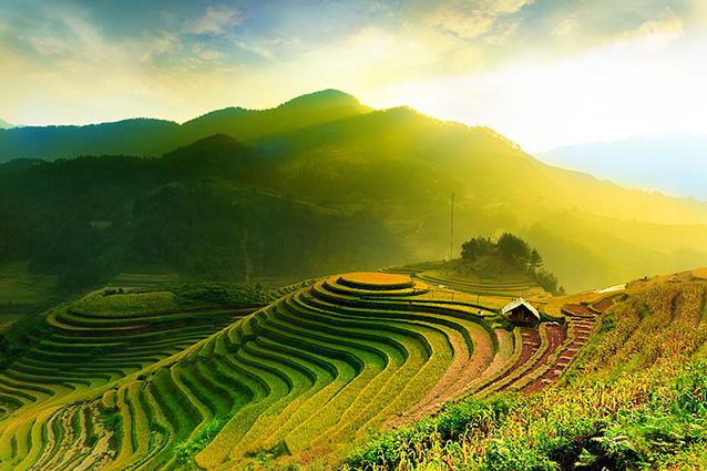 Tranh phong cảnh quê hương đẹp nhất: mã in TH-1041-1