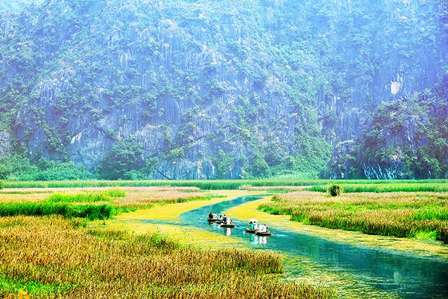 Tranh phong cảnh quê hương đẹp nhất: mã in TH-1081-1