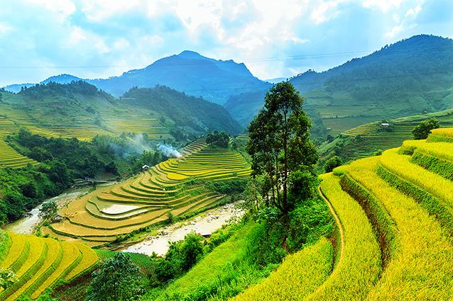 Tranh phong cảnh quê hương đẹp nhất: mã in TH-1088-1