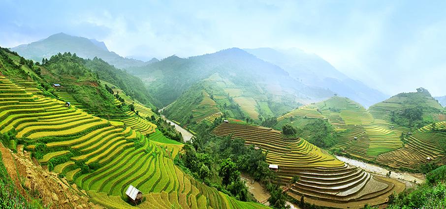 Tranh phong cảnh quê hương đẹp nhất: mã in TH-1105-1