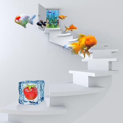 TH-58P-00826-copy - Tranh dán tường 3d hoạt hình dán phòng bé yêu - món quà Trung Thu ý nghĩa nhất