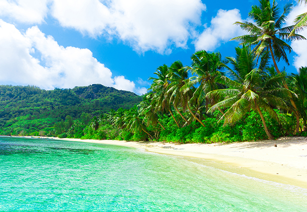 """THS_0895 - Tranh dán tường 3d phong cảnh biển mênh mông, sóng nước thi nhau xô vào bờ khiến tâm hồn người ngắm như được """"gột rửa"""" bằng nước muối...biển"""