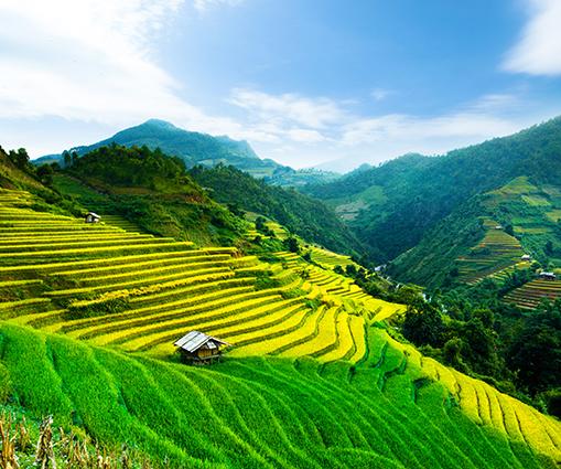 THS_1082 - Tranh 3d phong cảnh làng quê đẹp nhất 2019