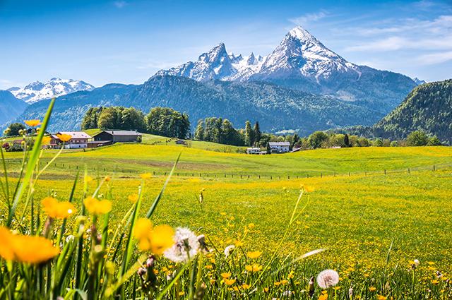 Tranh phong cảnh đồng quê giản dị mà đẹp đến nao lòng: mẫu in THS_1119