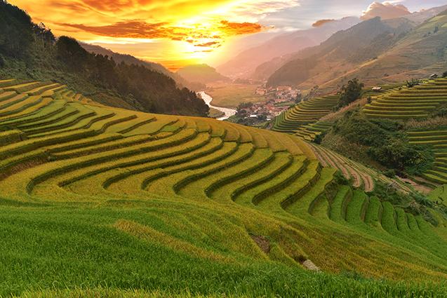 Tranh phong cảnh quê hương đẹp nhất: mã in THS_1584