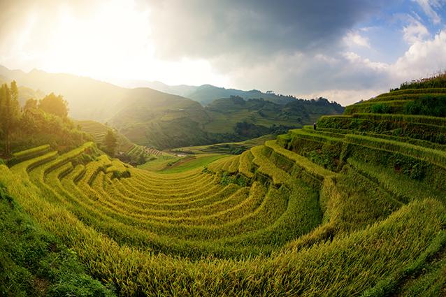 THS_1628- Tranh 3d phong cảnh làng quê đẹp nhất 2019