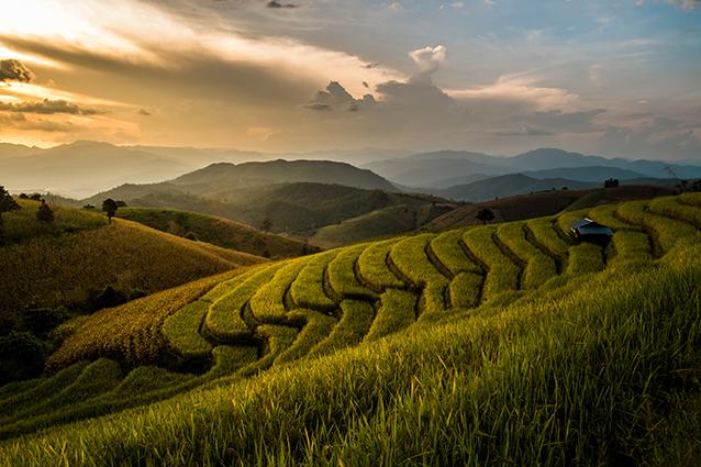 THS_1650- Tranh 3d phong cảnh làng quê đẹp nhất 2019