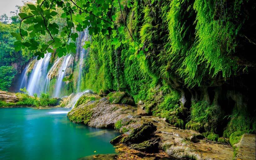 Mẫu tranh sơn thủy hữu tình tuyệt đẹp: mã in a beautiful waterfall in the forest on a river