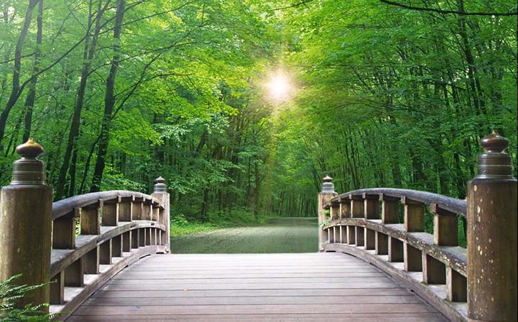 Tranh phong cảnh thiên nhiên mang đến nét mới lạ, thu hút cho phòng khách: mẫu in TH_23927