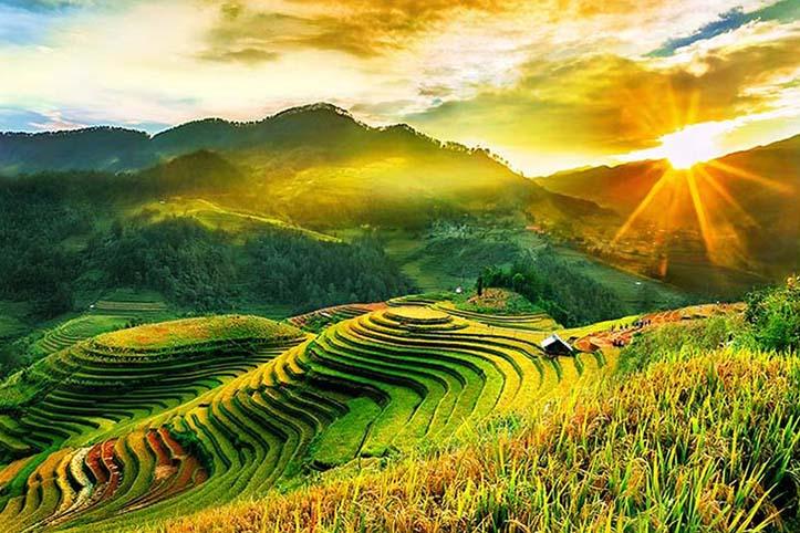 TH_25880 - Tranh 3d phong cảnh làng quê đẹp nhất 2019