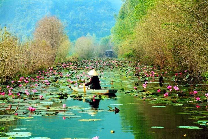 TH_25896 - Tranh 3d phong cảnh làng quê đẹp nhất 2019