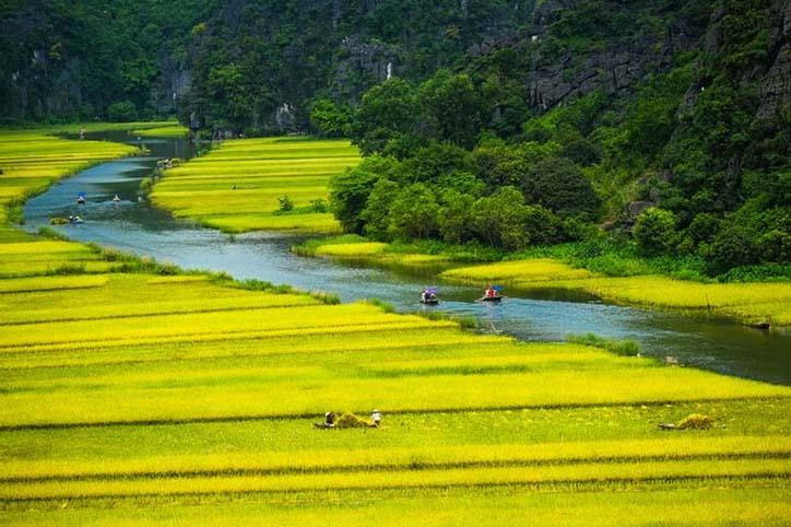 TH_25899 - Tranh 3d phong cảnh làng quê đẹp nhất 2019