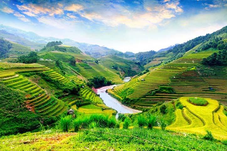 TH_25901 - Tranh 3d phong cảnh làng quê đẹp nhất 2019