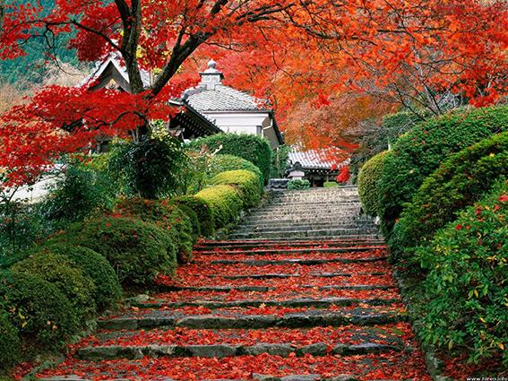 THS_1682- 10 mẫu tranh phong cảnh mùa thu đẹp nhất thế giới
