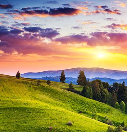 18 mẫu tranh phong cảnh đẹp 2020: mã in THS_0546