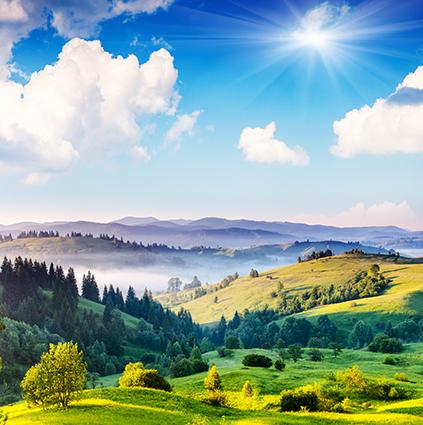 18 mẫu tranh phong cảnh đẹp 2020: mã in THS_0547