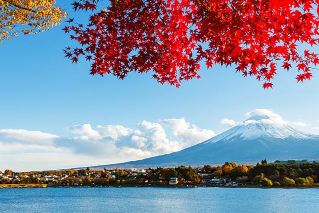 18 mẫu tranh phong cảnh thiên nhiên đẹp nhất 2020: mã in THS_0658