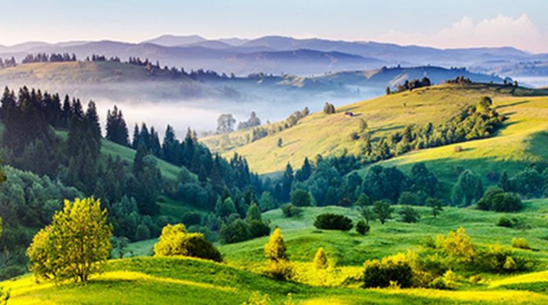 Tranh 3d phong cảnh mùa xuân mang đến nguồn cảm hứng bất tận cho ngôi nhà bạn